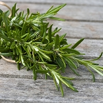 Rosemary Essential Oil 2oz